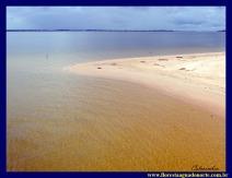 Praia Maria Jose floresta agua norte amazonia celcoimbra 6